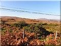 B8806 : Adderwal Townland by Kenneth  Allen