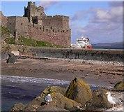 SC2484 : Peel Castle on St Patrick's Isle by Shazz