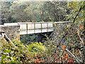 SD7703 : Footbridge, Clifton Country Park by David Dixon