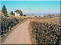 SO3816 : Newordden Farm by Trevor Rickard