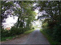 SD5113 : Sanderson Lane by Raymond Knapman
