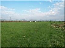 SH2428 : Cliff top fields west of Siop-Penyrallt by Eric Jones