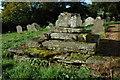 SO3620 : Base of cross, Llangattock Lingoed by Philip Halling