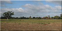 TQ4612 : Field off Potato Lane by Oast House Archive