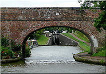 SO9969 : Bridge No 56 near Tardebigge, Worcestershire by Roger  Kidd
