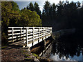 SD3688 : Footbridge, High Dam by Karl and Ali