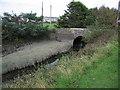 W6653 : Belgooly Bridge in Belgooly by Neville Goodman
