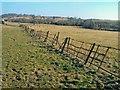 SO4015 : Fence near Llantilio Crossenny by Trevor Rickard