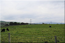 SD7130 : Cow pastures by Cut Lane by Bill Boaden