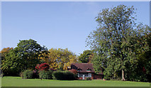SO9098 : Autumn colours in West Park, Wolverhampton by Roger  Kidd