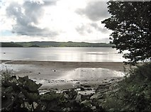 NX6548 : Nun Mill Bay and the Dee estuary by Ann Cook