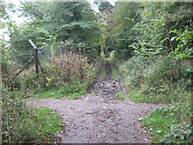 TR1034 : Bridleway junction on Royal Military Road by David Anstiss