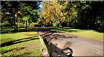 J3472 : Seat, Ormeau Park, Belfast by Albert Bridge