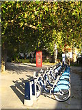 TQ2977 : Cycle hire station and plane trees in Grosvenor Road by Rod Allday
