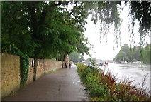 TQ1774 : Thames Path at Richmond by N Chadwick