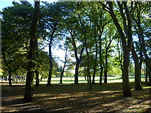 NT2572 : West Meadows by kim traynor