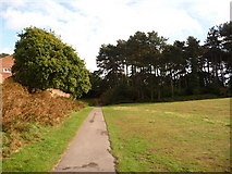 SZ0895 : Redhill: path into the woods at Redhill Common by Chris Downer