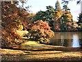 TQ4123 : Autumn Colours near Upper Woman's Way pond by Paul Gillett