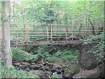 NY7962 : Footbridge over Farnalees Burn by Les Hull