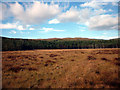 SD3388 : Rusland Moss National Nature Reserve by Karl and Ali