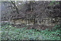 SK7605 : Tilton Railway Cutting by Ashley Dace