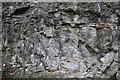 SK7605 : Jurassic Strata by Ashley Dace
