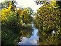 NS8594 : River Devon by Euan Nelson