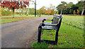 J3473 : Seat, Ormeau Park, Belfast (2) by Albert Bridge