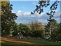 ST3087 : Children's play area, Belle Vue Park by Robin Drayton