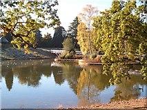 SJ6855 : Queen's Park lake, Crewe by Margaret Sutton
