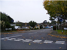 TM3876 : Old Orchard Close, Halesworth by Adrian Cable
