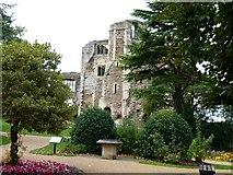 SK7954 : Newark Castle by James Allan