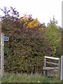 TM3762 : Footpath sign & Stile on Footpath to B1121 South Entrance by Adrian Cable