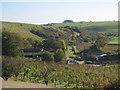TQ4005 : Breaky Bottom vineyard by Oast House Archive