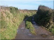SH1728 : Farm track to Cae'r-geifr by Eric Jones