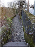SD9927 : Footpath from Shelf Road to the Rochdale Canal by Alexander P Kapp