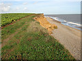 TM5383 : Clifftop path from Benacre Broad to Kessingland by Evelyn Simak