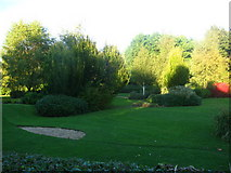 ST8744 : Trees in Lake Pleasure Gardens by David Roberts