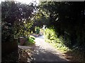 SO8253 : Road in Upper Wick on a sunny day by Andrew King