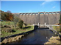 SN8663 : A view of the Claerwen Dam wall by Jeremy Bolwell