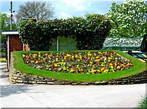 SJ9222 : Victoria Park (4) - Flowerbed by P L Chadwick