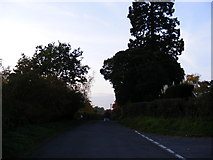 TM3464 : Bruisyard  Road, Rendham by Adrian Cable