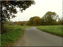 TM0960 : Road to Middlewood Green from Forward Green by Robert Edwards