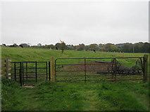 TR2648 : Kissing gate and gate near Long Lane Farm cottage by David Anstiss