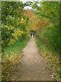 ST7764 : Footpath, University of Bath by David P Howard
