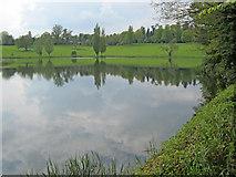 ST9870 : Bowood Lake by Trevor Rickard