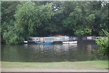 TQ1667 : Narrowboat on the River Thames by N Chadwick