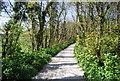 TQ5503 : The Wealdway, Folkington by N Chadwick