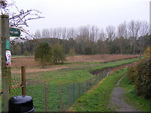 TM3877 : Footpath to Mill Road by Adrian Cable