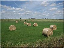 TL4279 : Hay Bales at Willow Farm by Hugh Venables